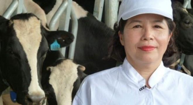 Bán con bò sữa tỷ đô: Nhà nghèo 'đếm cua trong lỗ' ảnh 2