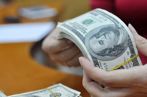 Vay hàng tỷ USD cứu ngân sách: Dồn căng thẳng vào tương lai ảnh 2