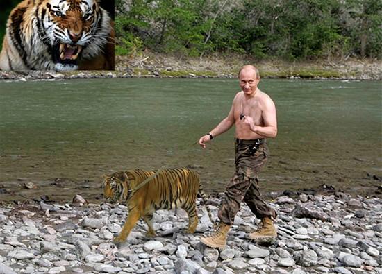 """Putin """"quyền lực nhất"""" thế giới và những khoảnh khắc sức mạnh ảnh 14"""