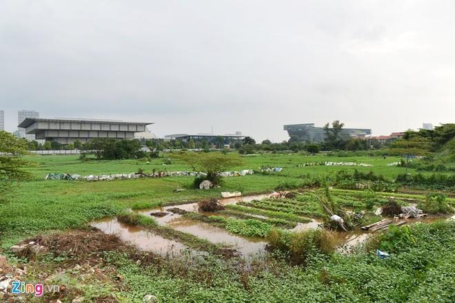 Hà Nội: Dự án Tháp tỷ đô để dựng trại nuôi trâu ảnh 2