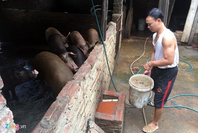 Hà Nội: Dự án Tháp tỷ đô để dựng trại nuôi trâu ảnh 1