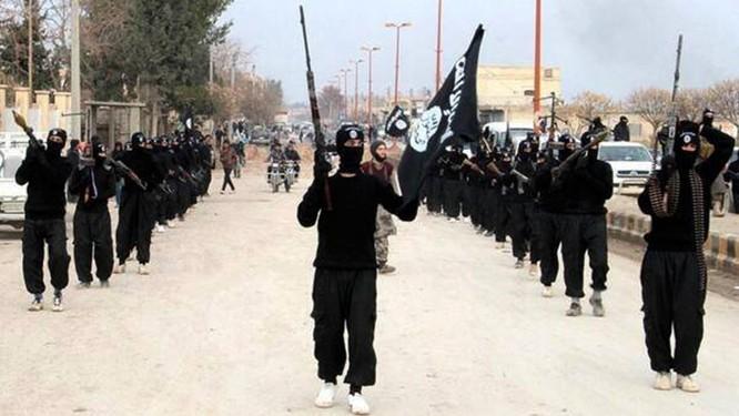 IS được cho là do Thổ Nhĩ Kỳ dung dưỡng và hậu thuẫn nhằm phục vụ cho các tham vọng của mình
