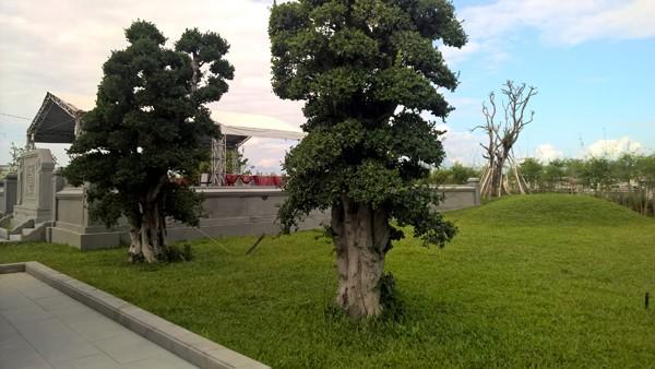 Khu lăng mộ và nhà tưởng niệm ông Nguyễn Bá Thanh ảnh 6