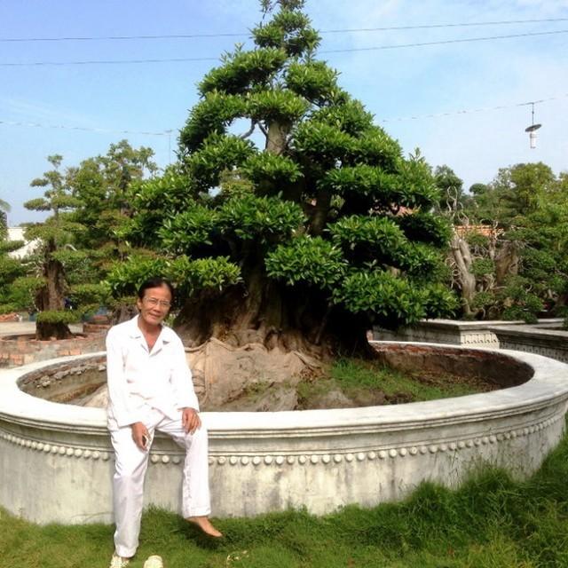 Những báu vật trăm tuổi, triệu đô của đại gia Việt ảnh 10