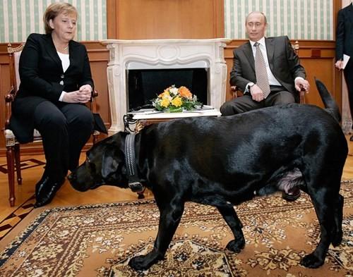 Siêu vũ khí bảo vệ Tổng thống Nga ảnh 1