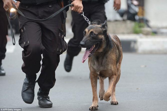 Toàn cảnh loạt vụ phiến quân khủng bố tấn công 7 điểm ở Jakarta ảnh 5