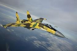 Tiêm kích Su-30MK và câu chuyện thần kỳ ảnh 5
