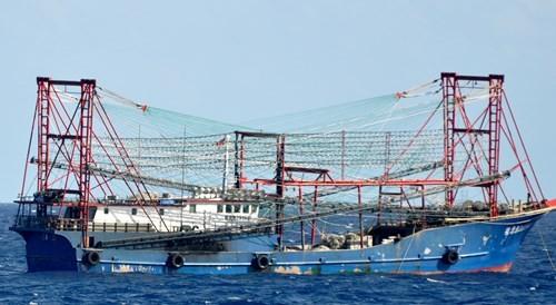 Tàu Trung Quốc tăng đột biến quanh bãi ngầm thuộc Bà Rịa-Vũng Tàu ảnh 3