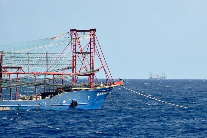 Tàu Trung Quốc tăng đột biến quanh bãi ngầm thuộc Bà Rịa-Vũng Tàu ảnh 11