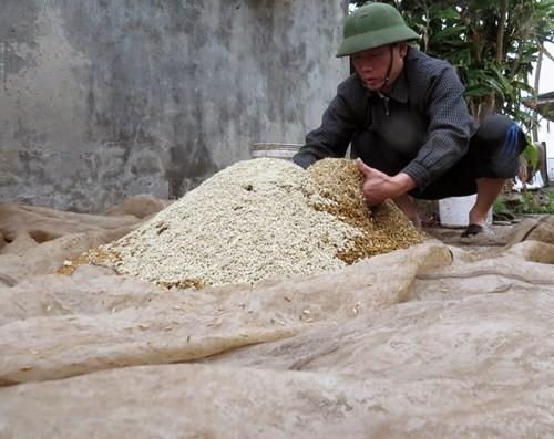 Anh em ông Đoàn Văn Vươn, người đàn ông 'vịt biển' của gia đình - ảnh 1