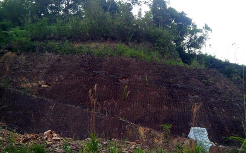 Bí thư huyện đào xuyên núi để 'làm hầm rượu' ảnh 2