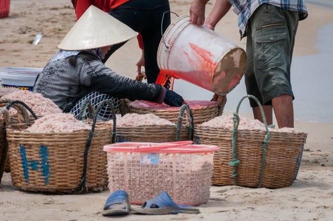 """Ngư dân dùng hóa chất nhuộm đỏ con ruốc gây """"bão"""" mạng ảnh 3"""