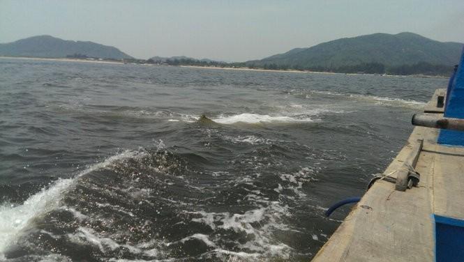 Sau dải nước đỏ, xuất hiện vệt nước sậm khác thường cách Vũng Áng 20km ảnh 2