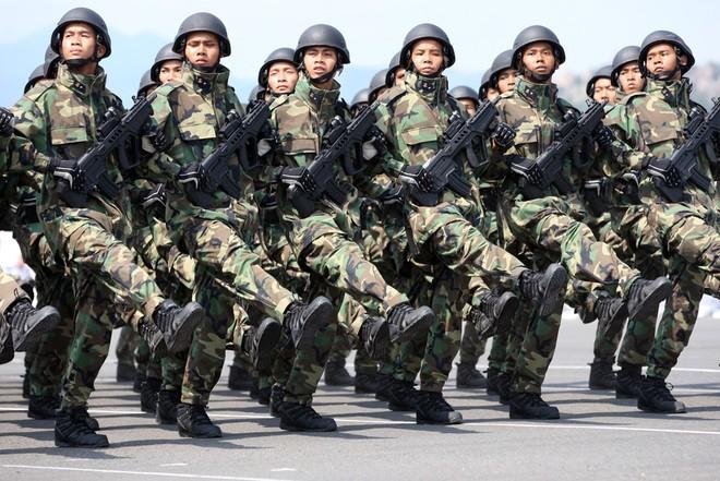 Lực lượng hải quân đánh bộ của của Việt Nam