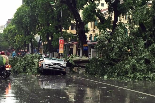 Hà Nội: Nhiều tuyến phố ngập nặng và mất điện vì mưa to, gió giật mạnh ảnh 19