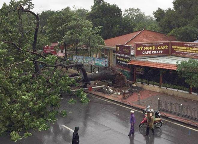Hà Nội: Nhiều tuyến phố ngập nặng và mất điện vì mưa to, gió giật mạnh ảnh 20