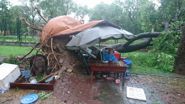 Hà Nội: Nhiều tuyến phố ngập nặng và mất điện vì mưa to, gió giật mạnh ảnh 31