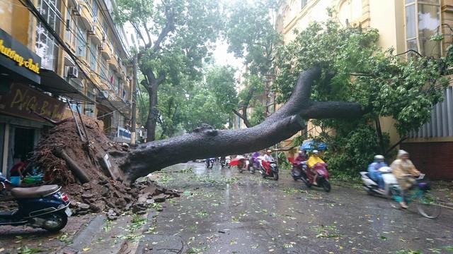 Hà Nội: Nhiều tuyến phố ngập nặng và mất điện vì mưa to, gió giật mạnh ảnh 27