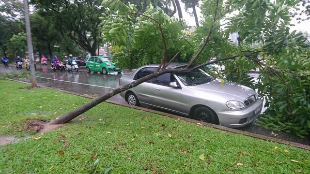 Hà Nội: Nhiều tuyến phố ngập nặng và mất điện vì mưa to, gió giật mạnh ảnh 29
