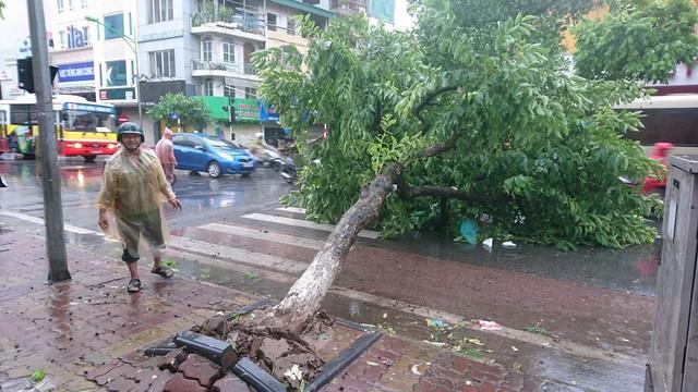 Hà Nội: Nhiều tuyến phố ngập nặng và mất điện vì mưa to, gió giật mạnh ảnh 28