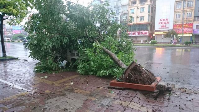 Hà Nội: Nhiều tuyến phố ngập nặng và mất điện vì mưa to, gió giật mạnh ảnh 36