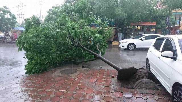 Hà Nội: Nhiều tuyến phố ngập nặng và mất điện vì mưa to, gió giật mạnh ảnh 38