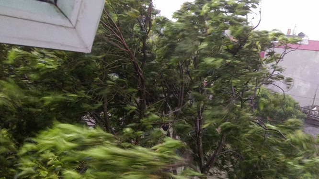 Hà Nội: Nhiều tuyến phố ngập nặng và mất điện vì mưa to, gió giật mạnh ảnh 44