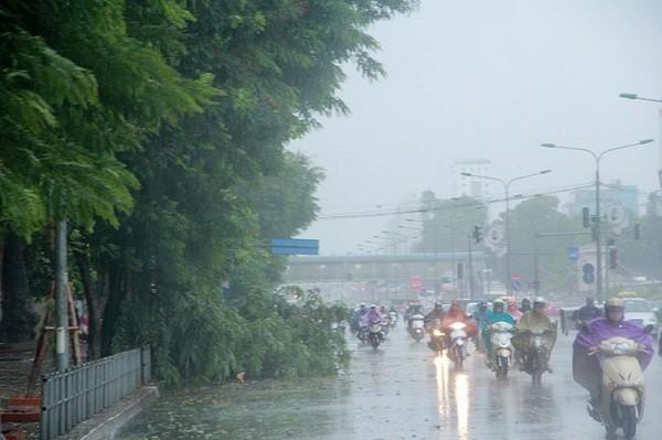 Hà Nội: Nhiều tuyến phố ngập nặng và mất điện vì mưa to, gió giật mạnh ảnh 11
