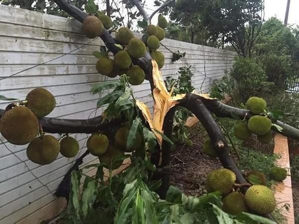Hà Nội: Nhiều tuyến phố ngập nặng và mất điện vì mưa to, gió giật mạnh ảnh 5