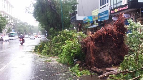 Hà Nội: Nhiều tuyến phố ngập nặng và mất điện vì mưa to, gió giật mạnh ảnh 6