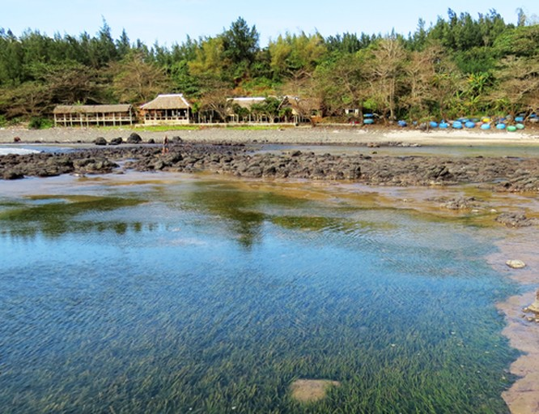 Phát hiện dấu tích miệng núi lửa cổ ở vùng biển Quảng Ngãi ảnh 1