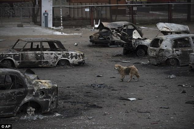 Mỹ tuyên bố nhúng tay lật đổ chính quyền thân Nga tại Ukraine, mục tiêu thực tế? ảnh 1