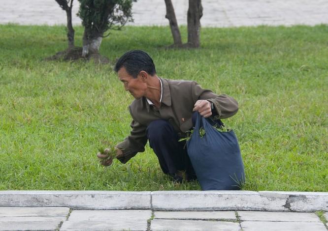 """Cuộc sống bên trong """"vương quốc bí ẩn"""" Triều Tiên ảnh 5"""