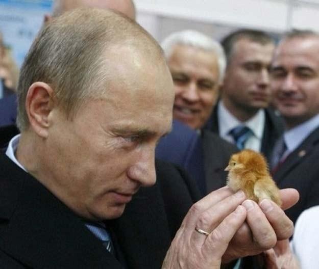 V.Putin - chỉ là người bình thường ảnh 20