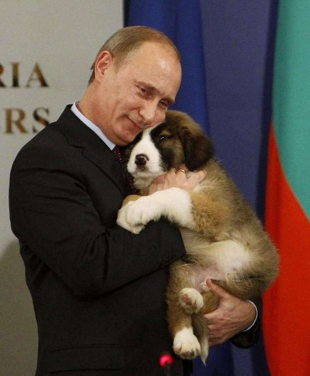 V.Putin - chỉ là người bình thường ảnh 32