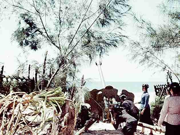 Bóng hồng Việt Nam - trên cả anh hùng - (phần 2) ảnh 12