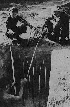 Bóng hồng Việt Nam - trên cả anh hùng - (phần 2) ảnh 20