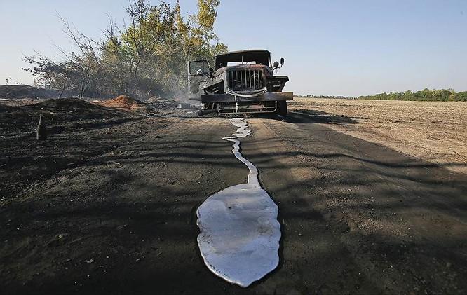 Cận cảnh xung đột Ukraine: một năm thảm họa ảnh 52