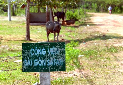 Dự án công viên lớn nhất Việt Nam để cỏ mọc hoang ảnh 2