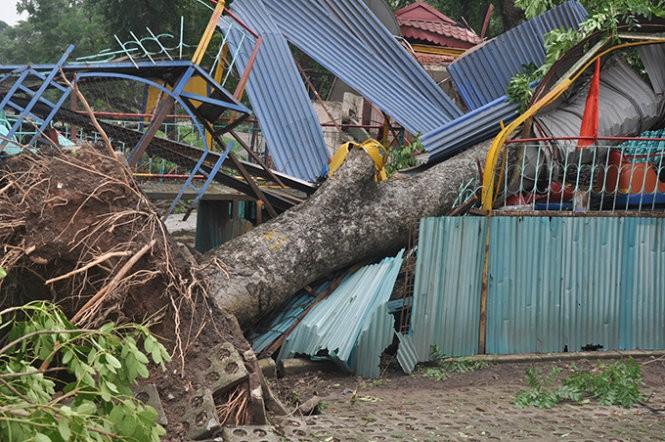 Hà Nội ngổn ngang cây gãy đổ, cột thu sóng VTC bị quật ngã ảnh 6
