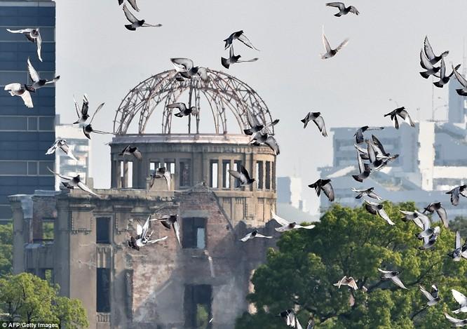 Chùm ảnh độc thảm họa hạt nhân Hirosima 70 năm trước ảnh 67