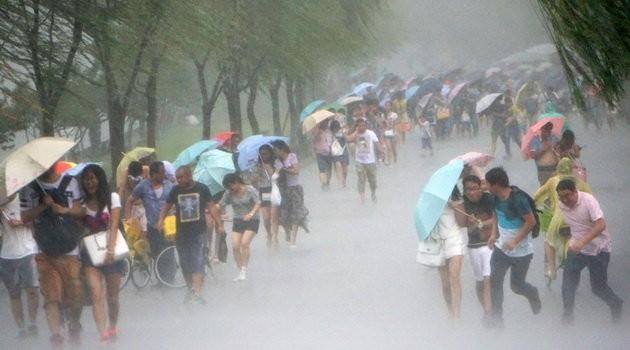 Đài Loan tơi bời trong bão, Trung Quốc sơ tán 158.000 dân ảnh 8