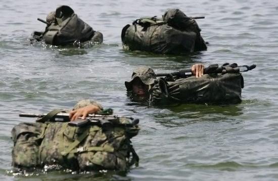 Những lực lượng uy mãnh của hải quân Hàn Quốc ảnh 2