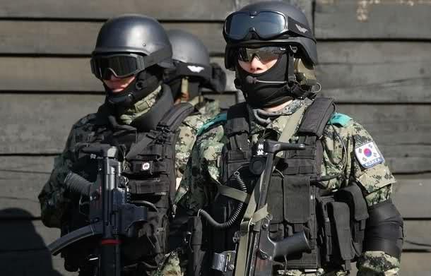 Những lực lượng uy mãnh của hải quân Hàn Quốc ảnh 7
