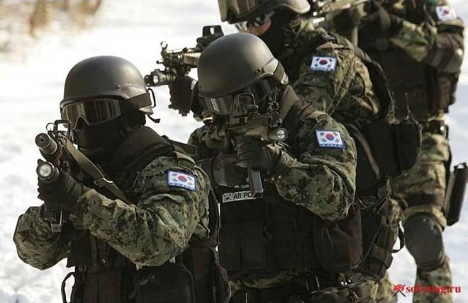 Những lực lượng uy mãnh của hải quân Hàn Quốc ảnh 8