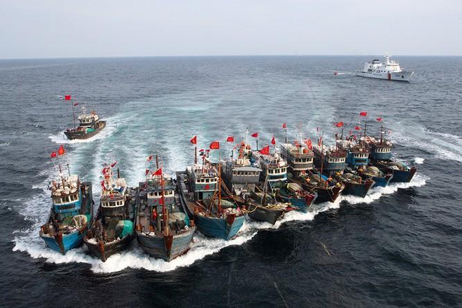 Trung Quốc đã thành lập lực lượng dân quân biển với hạm đội tàu cá 200.000 chiếc, phục vụ cho tham vọng lãnh thổ
