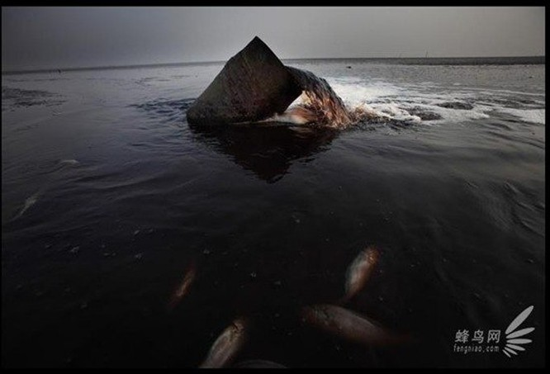 Chùm ảnh thảm họa môi trường khủng khiếp ở Trung Quốc ảnh 10