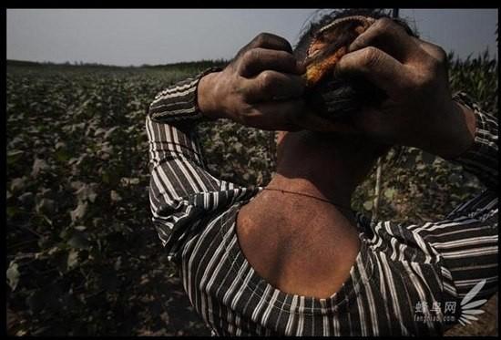Chùm ảnh thảm họa môi trường khủng khiếp ở Trung Quốc ảnh 27