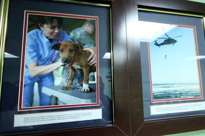 Bên trong tàu bệnh viện gần 1.000 giường của Hải quân Mỹ ảnh 9