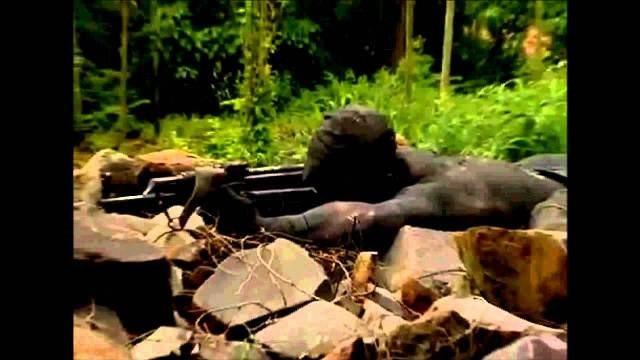 Đặc công Tây Bán cầu - Lực lượng đặc nhiệm Ó đen Cuba ảnh 7
